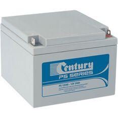 PS12240 (12V, 24AH) M5 VRLA Battery