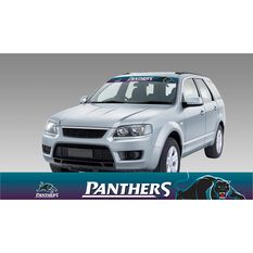 PANTHERS ITAG SUN VISOR RADIANT DESIGN