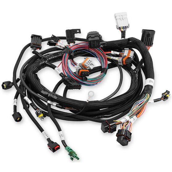 Holley Ford Coyote Main EFI Harness - Ford Coyote HP Dominator EFI  (Non-VVT), HO558-109