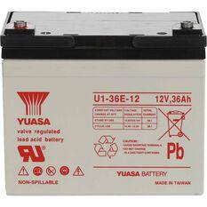 REC36-12 VRLA Battery