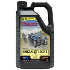 1 X SHELSLEY LIGHT 5L