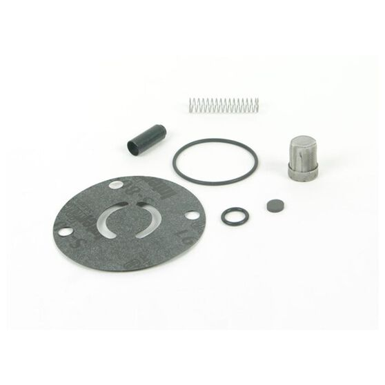 CHECK VALVE KIT FOR 12-125, , scaau_hi-res