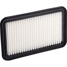Ryco Air Filter A1629, , scaau_hi-res