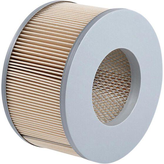 Ryco Air Filter A1438, , scaau_hi-res