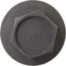 Tridon Oil Drain Plug TDP010, , scaau_hi-res