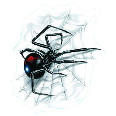 Hot Stuff Sticker - Spider with Web, Vinyl, , scaau_hi-res