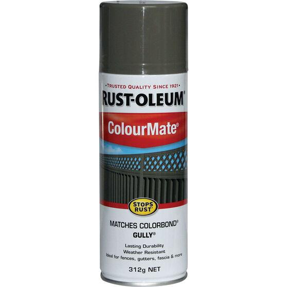 Rust-Oleum Aerosol Paint - Colourmate, Gully 312g, , scaau_hi-res